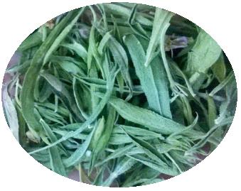 santoreggia montana casentino locale spezie erbe cracco aroma