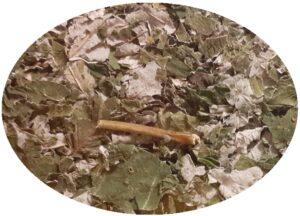 foglie di lampone lamponi tè tisana salute tensioni muscolari rilassante muscolare
